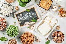 مهمترین نقش پروتئین در بدن