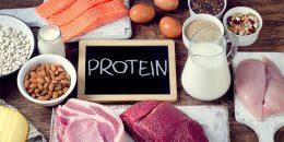 تاثیر پروتئین بر روی عملکرد بدن